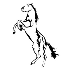 Outline horse vector image. Can be use for logo and tattoo