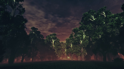 Dark Sinister Mysterious Magic Forest