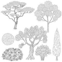 Black and white outlines trees and bushes.