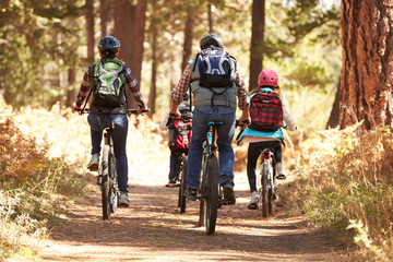 Fototapeten Radsport Family mountain biking on forest trail, back view