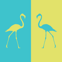 illustration flamingo