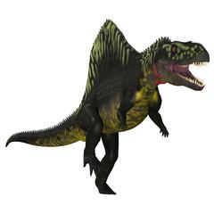 Arizonasaurus on White - Arizonasaurus was a sailback carnivorous archosaur that lived in Arizona, North America in the Triassic Period.