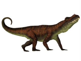 Prestosuchus Side Profile - Prestosuchus was a carnivorous archosaur dinosaur that lived in the Triassic Period of Brazil.