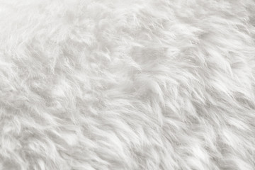 natural white fur background Wall mural