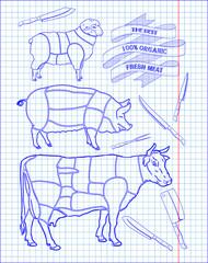 butchering beef diagram, pork, lamb and knife
