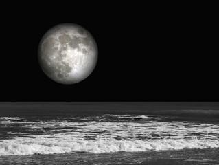 Playa, luna llena, nocturna, mar, blanco y negro, paisaje, luna tridimensional