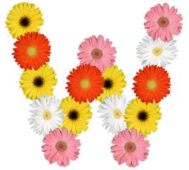 Buchstabe W Alphabet aus Blumen Freisteller auf weiss