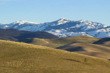 Canvas Prints Hill open rolling hills stand before a snow capped mountain