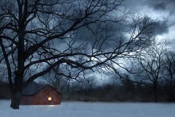 Bare tree over lit barn in snowy meadow