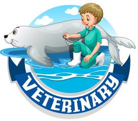 Male vet examining seal