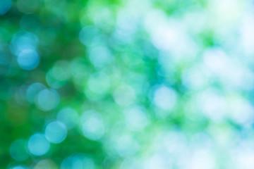Blurred green lights circular bokeh abstract for Christmas back
