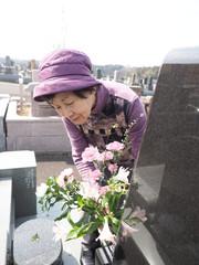 お彼岸にお墓に花を添える80歳の母