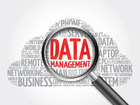 Data Management word cloud with magnifying glass, business concept