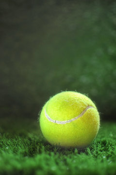 Healthiness concept and sport background idea, tennis ball on the green grass