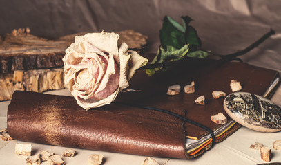 Obraz old leather notebook and dry ro - fototapety do salonu