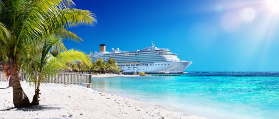Wall Mural - Cruise To Caribbean With Palm tree On Coral Beach