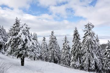 Postavaru Mountains in winter. The altitude of the peak is 1799 meters. Poiana Brasov, Romania