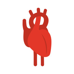 Human red heart symbol. Vector illustration.