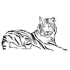 Outline lying tiger vector image. Can be use for logo and tattoo