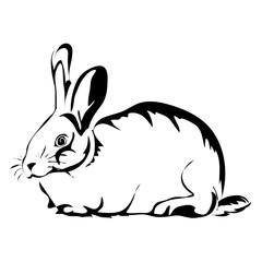 Outline rabbit vector image. Can be use for logo and tattoo