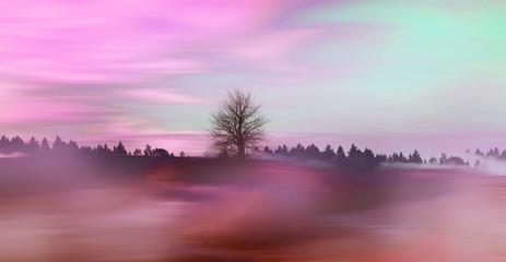 Aluminium Prints Purple Beautiful colorful natural landscape