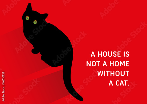 Cat Stock Quote Amazing Cats Illustrated Quote A House Is Not A Home Without A Cat