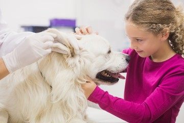 Girl holding her pet dog while vet examining his ear