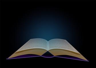 leuchtendes Buch vor schwarzem Hintergrund