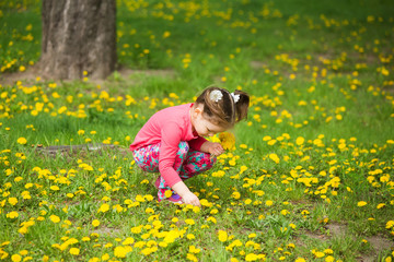 Beauty little girl with yellow dandelions playing outside on spring sunny day. Child sitting in fresh green grass among spring flowers. Small baby girl making bouquet of wild flowers.