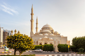 Mosque Sharjah Wall mural