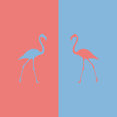 Illustration of a flamingo on a colored background