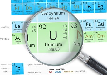 Uranium symbol - U. Element of the periodic table zoomed with magnifying glass