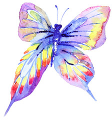 Abstract Watercolor hand drawn butterfly