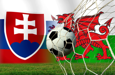 Soccer Euro 2016 ( Football )  Slovakia  and Welsh
