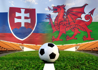 Soccer Euro 2016 ( Football )  Slovakia  and Welsh