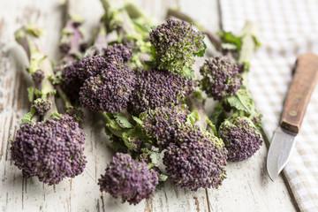 Broccoli rabe (also known as rapini)