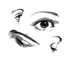 Hand drawing eyes on a white background. Vector illustration