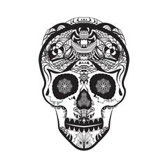cranium sugar copy