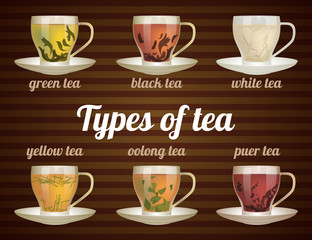 Types of tea in glass cups with tea leaves. Vector illustration. Vector tea set.