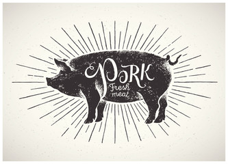 Graphic pig. Pork label. Vector illustration, drawn by hand.