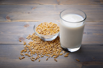Khorasan wheat milk