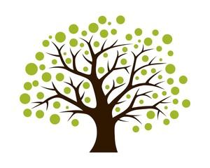 Spring Season Tree