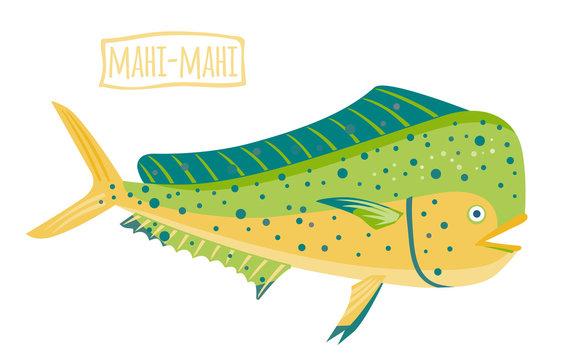 Mahi-mahi, vector cartoon illustration
