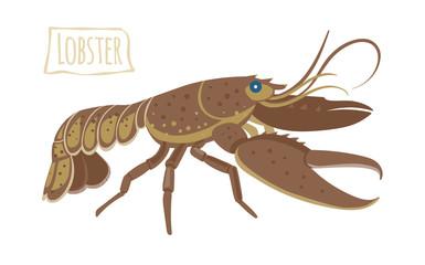 Lobster, vector cartoon illustration
