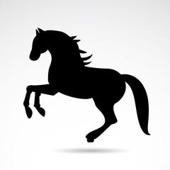 Horse vector icon.