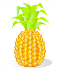 illustration of a pineapple.