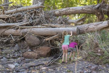 Caucasian girls exploring creek in forest