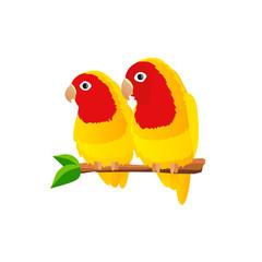 Pair of parrots lovebirds on white background