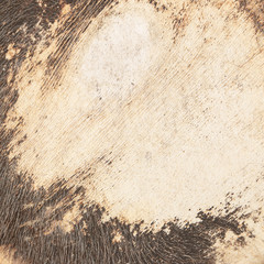 Old Cow raw material leather background