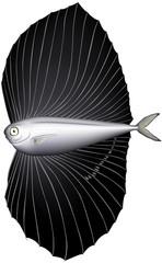 深海魚 ベンテンウオ (ベクター)